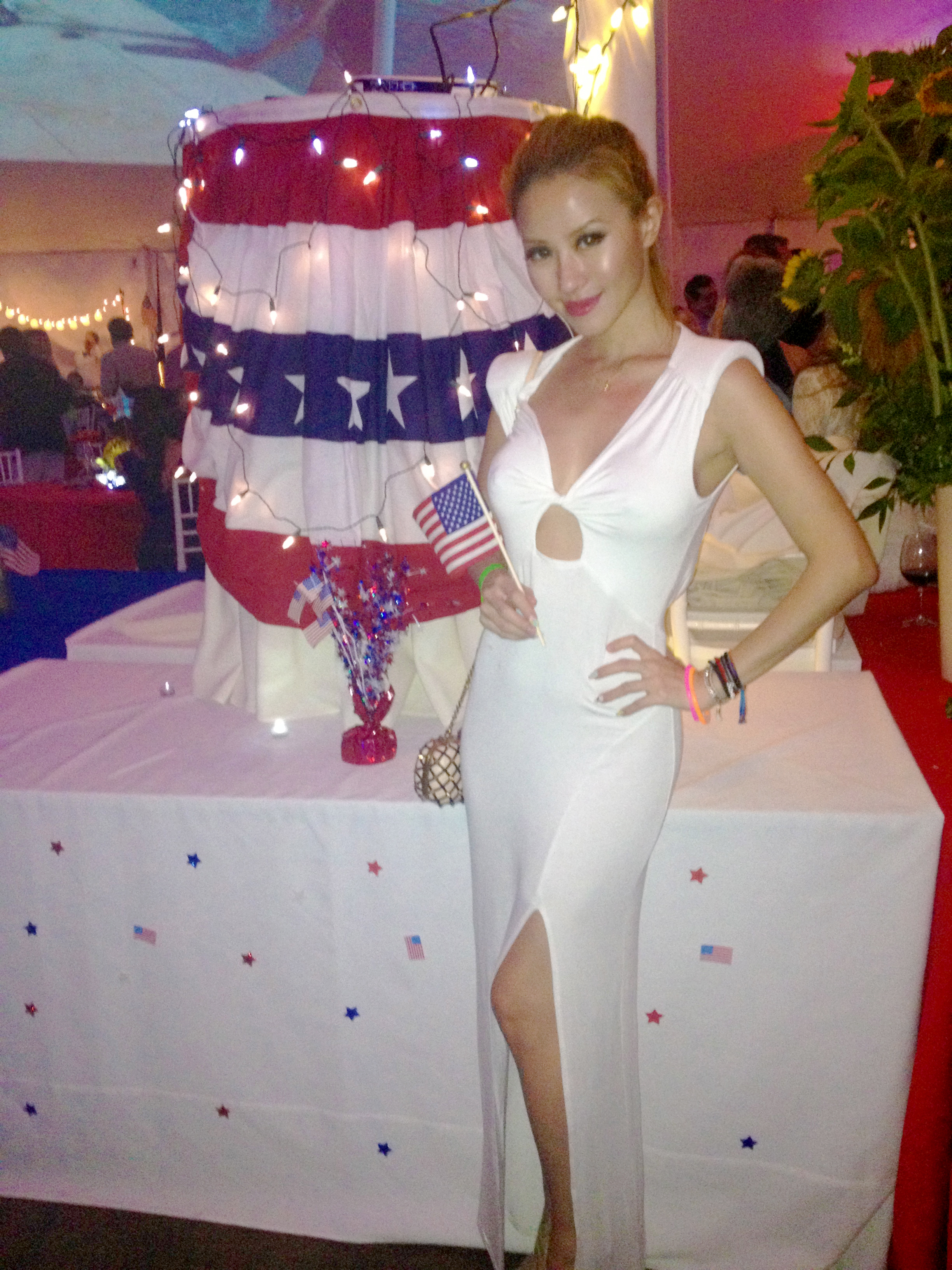 july_4th_party_american_flag